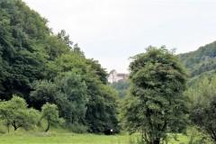 Blick vom Gasthaus / Landmetzgerei  Schloßblick im Nachbarort Mostviel